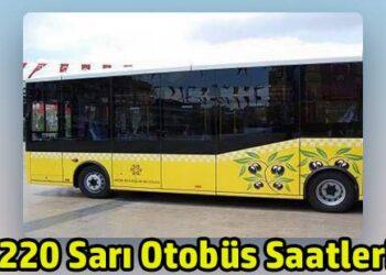 220 sarı otobüs hattı nazilli kuyucak